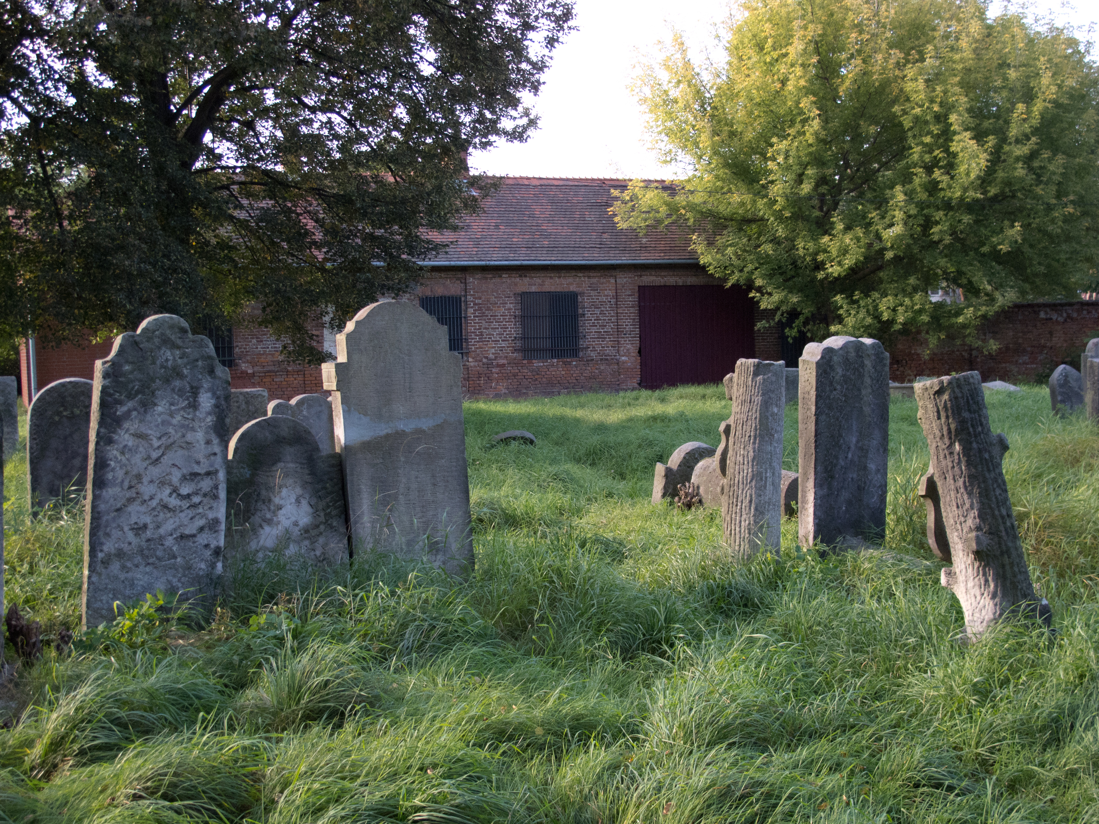 Cmentarz Zydowski W Pruszkowie.jpg